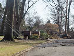 A downed power line in front of a house.