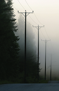 Power lines in the fog.