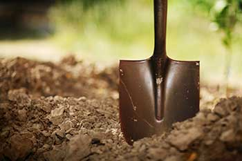 A shovel in the dirt, ready to start digging.